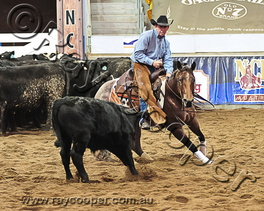 2012 NCHA Futurity Finals Weekend