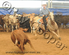 2012 DDCC Toowoomba Weekend Show