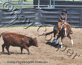 2013 North Star Classic Challenge Show