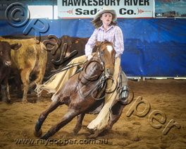 2015 Darling Downs Futurity Show