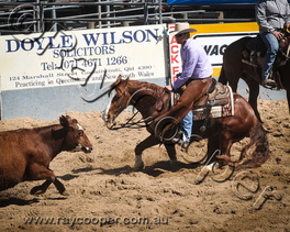 2015 Victoria Hotel Futurity and Aged Events Show (Gooniwindi)